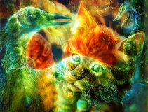 Gioco capo del gatto arancio radiante e dell'uccello con una piuma del pavone, Fotografia Stock