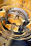 Gioco con l'arancio. Fotografia Stock Libera da Diritti