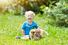 Gioco dei bambini con il cucciolo Bambini e cane in giardino fotografia stock