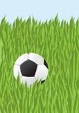 Gioco del calcio in un'erba Immagine Stock