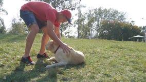 Gioco del cane e del giovane all'aperto alla natura Labrador o il golden retriever ed il suo proprietario maschio passano insieme Fotografia Stock Libera da Diritti