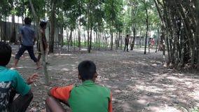 Gioco del cricket immagine stock libera da diritti