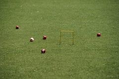 Gioco del croquet Fotografia Stock