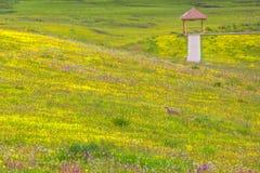 Gioco del deserto Fotografie Stock