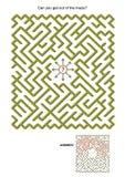 Gioco del labirinto illustrazione di stock