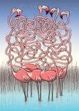 Gioco del labirinto di cinque fenicotteri Immagini Stock Libere da Diritti