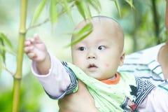 Gioco del neonato in foresta di bambù fotografie stock libere da diritti