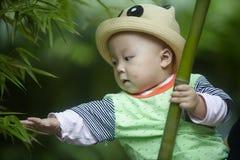 Gioco del neonato in foresta di bambù fotografia stock libera da diritti