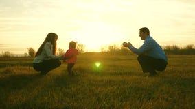 Gioco del papà e della mamma con la loro figlia sull'erba al tramonto Concetto di felicità della famiglia Il bambino va su prato  video d archivio