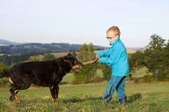 Gioco del ragazzino con il cane Fotografia Stock