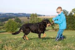 Gioco del ragazzino con il cane Fotografia Stock Libera da Diritti