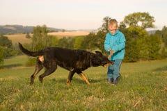 Gioco del ragazzino con il cane Immagine Stock