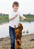 Gioco del ragazzo sulla banca del lago con il cane Fotografia Stock Libera da Diritti