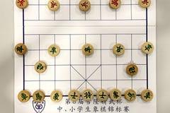 Gioco di scacchi cinese popolare fotografia stock libera da diritti