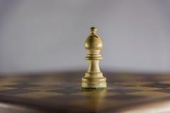 Gioco di scacchi, vescovo Immagini Stock Libere da Diritti