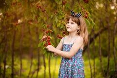 Gioco felice della bambina vicino al ciliegio nel giardino di estate Ciliegia di raccolto del bambino sull'azienda agricola della fotografia stock