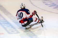 Gioco nel hockey su slittino del ghiaccio Immagini Stock