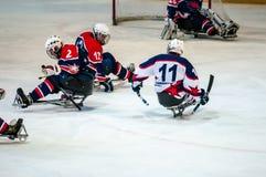 Gioco nel hockey su slittino del ghiaccio Fotografia Stock