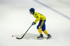 Gioco nel mini hockey con la palla Immagine Stock Libera da Diritti