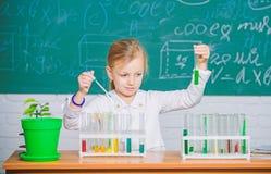 Gioco sveglio dell'allievo della scuola della ragazza con le provette ed i liquidi variopinti Esperimento chimico della scuola Is fotografia stock libera da diritti