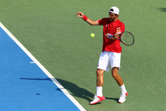 Gioco Ucraina v Austria di tennis di Davis Cup Immagine Stock Libera da Diritti