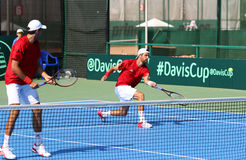 Gioco Ucraina v Austria di tennis di Davis Cup Fotografia Stock