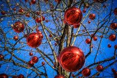 Gioia del Natale Fotografia Stock