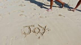 Gioia della spiaggia Fotografia Stock Libera da Diritti