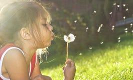 Gioia di estate fotografie stock libere da diritti