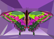 gioielli della farfalla dell'oro con le pietre preziose Priorità bassa nera Fotografia Stock Libera da Diritti