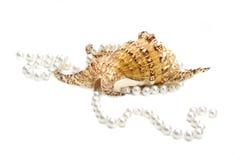 Gioielli di nozze delle donne Filo lungo delle perle rosa del fiume La raccolta di nozze naturali imperla le perle Macro foto iso fotografie stock