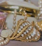 Gioielli eleganti con le perle Fotografia Stock Libera da Diritti
