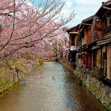 Gion,老京都 库存图片