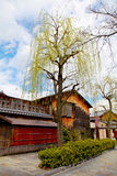 GION, OLD KYOTO. Old wooden houses in the Gion district of Kyoto in Japan with a willow tree in the foreground stock photography