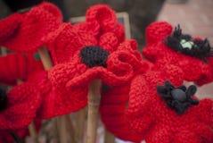 Giornata della memoria rossa tricottata di giorno del anzac del papavero Fotografie Stock Libere da Diritti