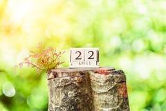 Giornata per la Terra e nuovo concetto di vita Immagini Stock Libere da Diritti