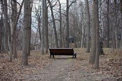 GIORNATA PER LA TERRA, giardino di Mosca Neskuchny Immagini Stock