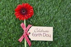 Giornata per la Terra, il 22 aprile, immagine di concetto Fotografie Stock Libere da Diritti
