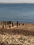 Giorni della spiaggia! fotografia stock