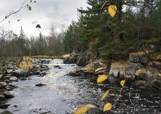 Giorni nuvolosi del ` s dell'autunno con le rapide di ribollimento Immagini Stock Libere da Diritti