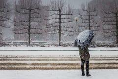 Giorni realmente freddi e nevosi a Amsterdam Fotografie Stock