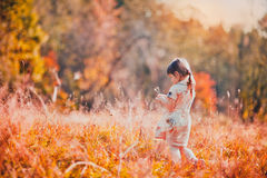 Giorno arancio di autunno Fotografia Stock Libera da Diritti