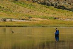 Giorno calmo nella Patagonia Immagini Stock Libere da Diritti