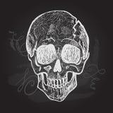 Giorno del cranio in bianco e nero morto Fotografie Stock