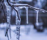 Giorno del ghiaccio dell'inverno Fotografie Stock