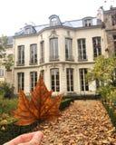 Giorno dell'autunno fotografia stock libera da diritti
