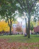 Giorno dell'autunno dell'iarda di Harvard Fotografie Stock