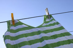 Giorno della lavata Immagini Stock Libere da Diritti