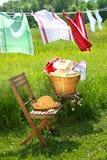 Giorno della lavata per i tovaglioli di piatto Fotografia Stock Libera da Diritti