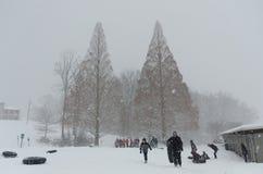 Giorno della neve Immagine Stock Libera da Diritti